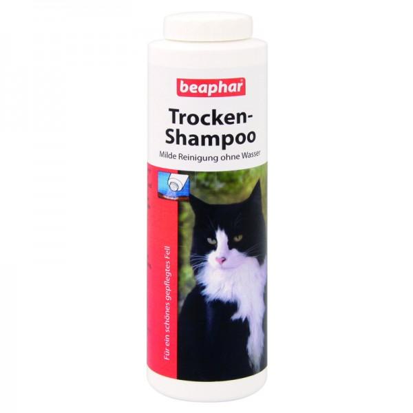 Trocken Shampoo