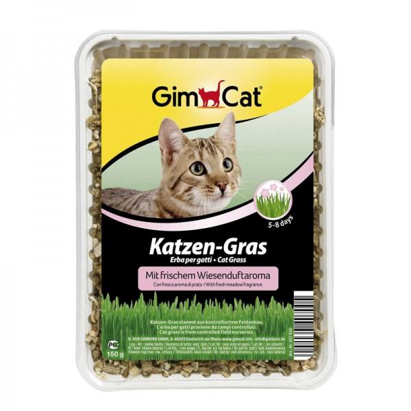 Katzengras mit Wiesenduft