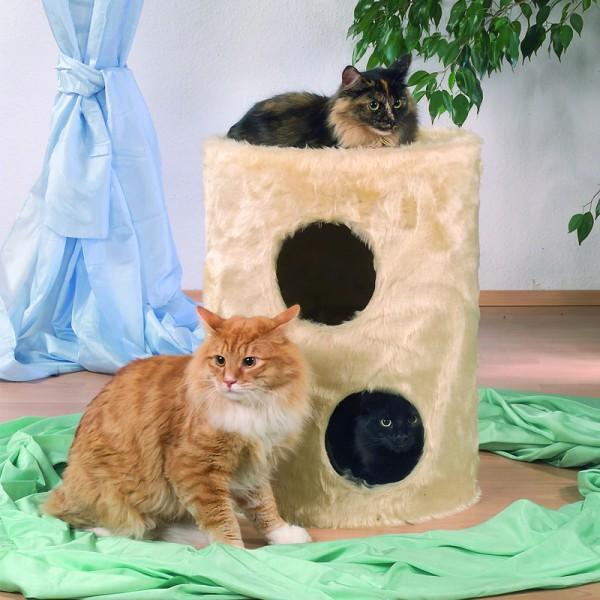 Cat Rondo Tebby