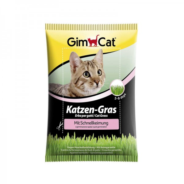 Katzengras schnellkeimend