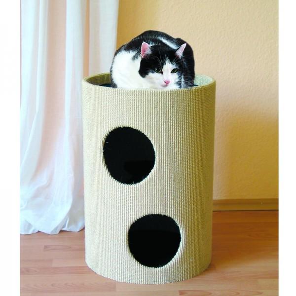 Cat-Rondo II