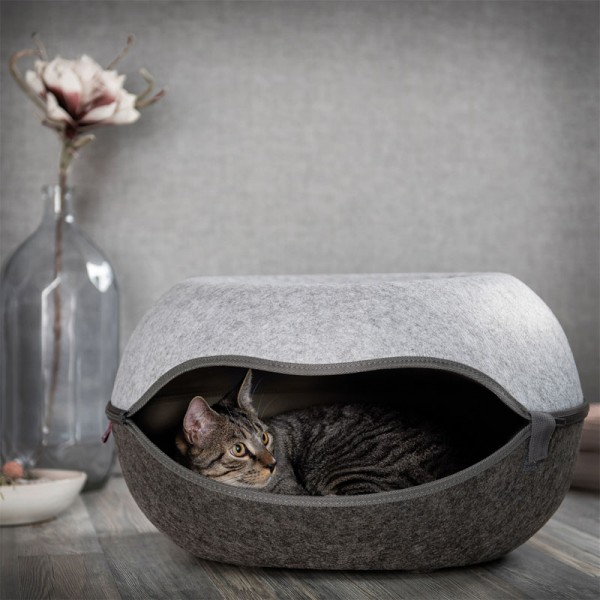 Katzennest 2.0