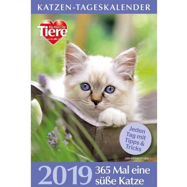 Katzen Tageskalender 2019