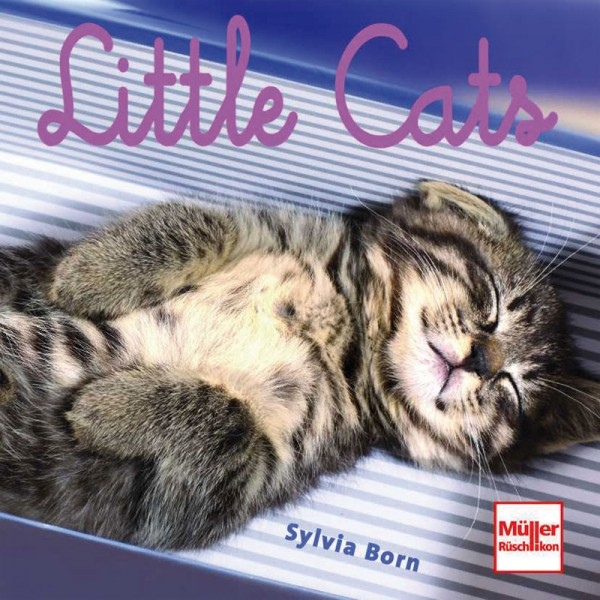 Buch Little Cats